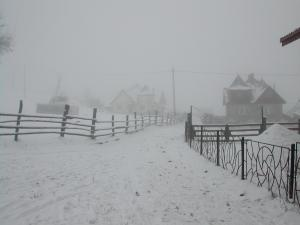Winter DSCN3262