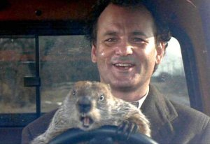 Bill Murray with groundhog driving car