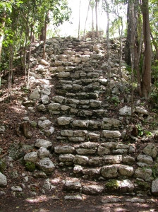 crumbly stone steps in the jungle