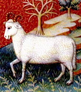 Aries ram illustration from amedieval astrology book