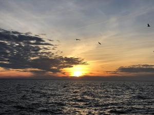 Sun setting intp ocean behind partial clouds