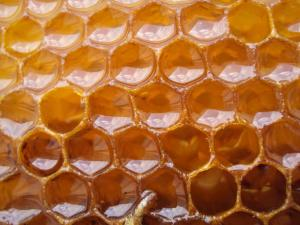 Close up photo of full honeycomb cells